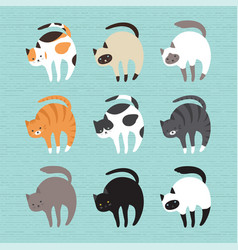 set cute cats vector image