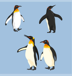 Set of penguins in different poses vector