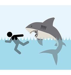 shark zone vector image