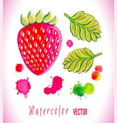 watercolor strawberry art vector image