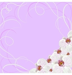 Decorative frame with orchid flowers vector image