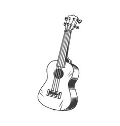 Hawaiian musical instrument ukulele concept vector
