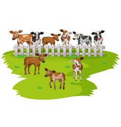 Many cows on farmyard vector