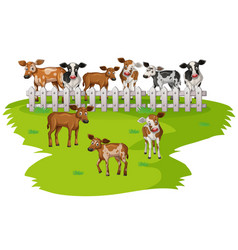 many cows on the farmyard vector image