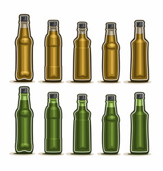 set of glass bottles vector image