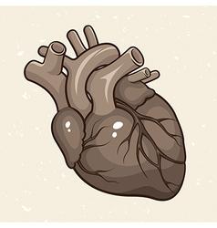 Grunge Human Heart vector image