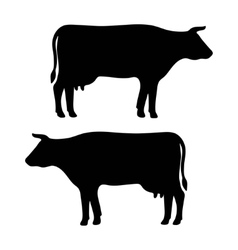 cow silhouette vector image vector image