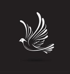 Birdsdove design on a black background wild vector
