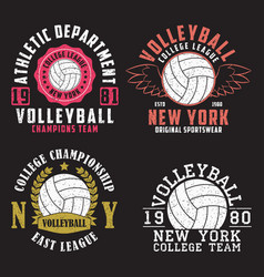 set volleyball new york print for apparel vector image