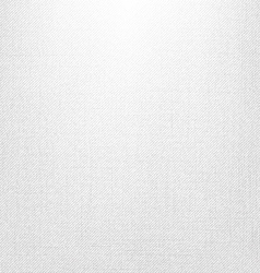 White Jeans Texture vector image