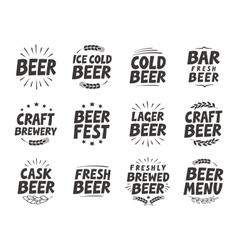 set labels Craft beer tags and elements vector image