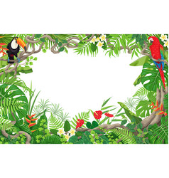 tropical plants and birds frame vector image vector image