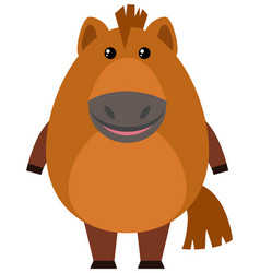 brown horse on white background vector image