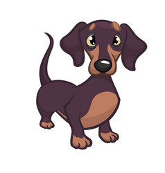 cartoon of dachshund vector image