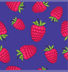 Seamless pattern raspberries on purple background vector