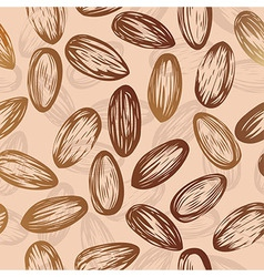 almonds nut seamless background drawing nuts vector image