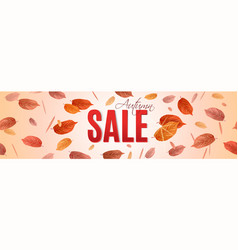 autumn sale banner with brigt falling leaves vector image