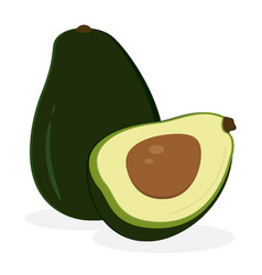avocado fruit icon isolated fruits and vegetables vector image