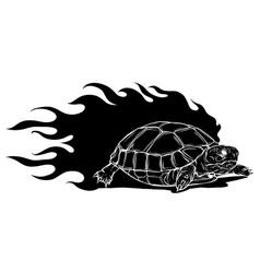 black silhouette sulcata vector image