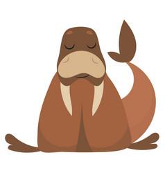 cartoon walrus a walrus vector image