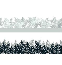 plant cineraria maritima seamless vector image