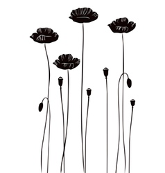 Poppy silhouettes vector image vector image