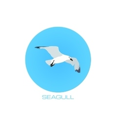White seagull at blue sky round background vector image