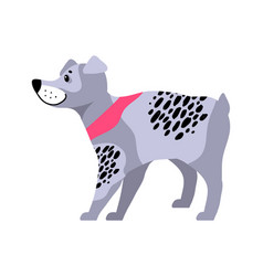 cute grey dog with black spots vector image