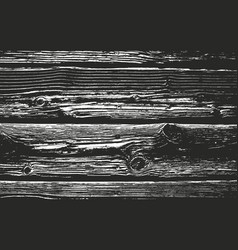 distressed overlay wooden bark texture vector image