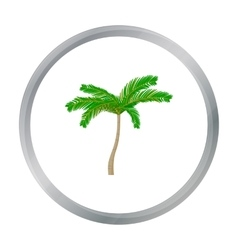 Mexican fan palm icon in cartoon style isolated on vector image