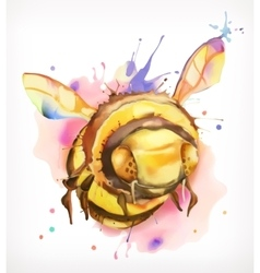 Watercolor painting honey bee vector