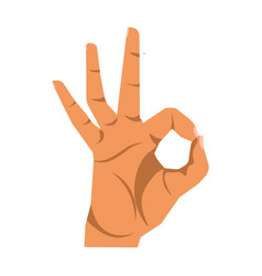 okay hand sign close up on white vector image vector image