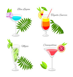 Set of popular cocktails decorated with fruit vector