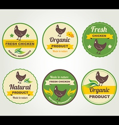 Badges chicken organic product design template vector image