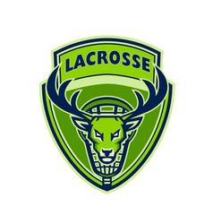 Deer buck stag lacrosse crest vector