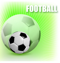 football with a ball vector image
