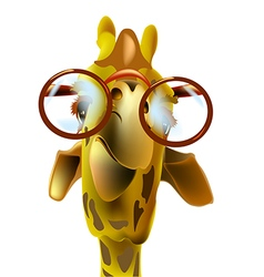 Giraffe and glasses vector image