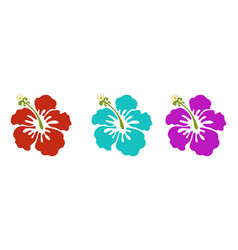 hawaiian flowers vector image