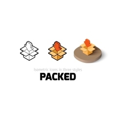 Packed icon in different style vector image
