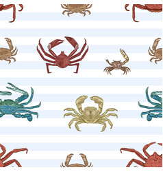 Sea crab seamless pattern aquatic animals vector