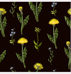 seamless pattern with dandelion and wild flowers vector image
