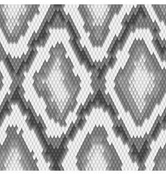 Seamless python snake skin pattern vector image