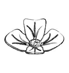 Spa flower isolated vector