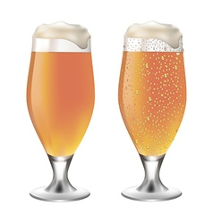 White beer in glass with drops vector