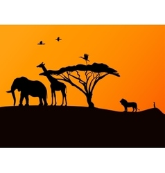 African sunset and animals vector image vector image