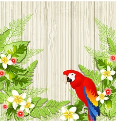 Tropical flowers and parrot vector image