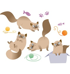 Collection of playful cat isolated on white backgr vector image vector image