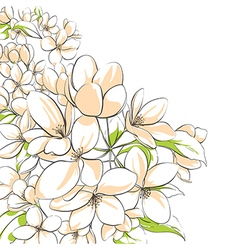 Apple tree floral card vector