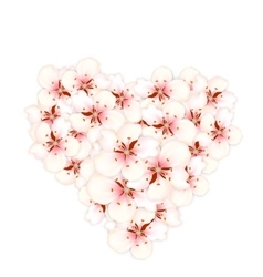 Bouquet sakura pink flowers in shape heart vector image