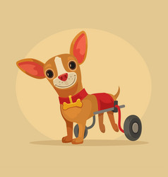 Disabled dog character in wheelchair vector